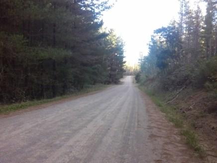 Bago Forest Way