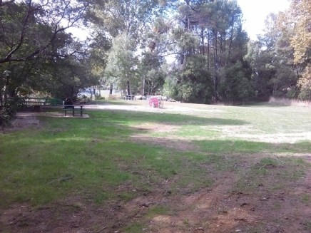 Reedy Creek Park, site of Olympic-sized swimming pool