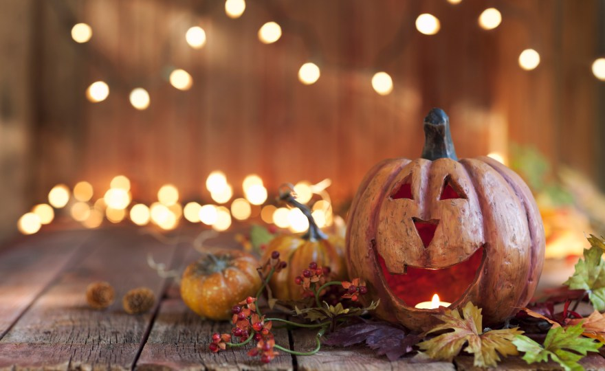 Halloween – Full Sized Candy