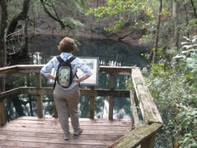 Sandra-Schmid-on-platform-looking-at-sink-at-Leon-Sinks-Geological-Area-Tallahassee-FL-01-04-2009