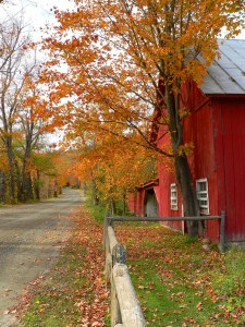 004-v-vermont-barn