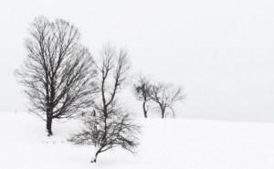 011-vermont-snow-scene