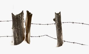 016-vermont-fence-posts