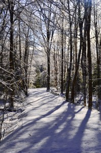 018-v-vermont-winter-path