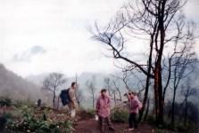 LAWU DENGAN BACKGROUND BUKIT GAJAH 1998