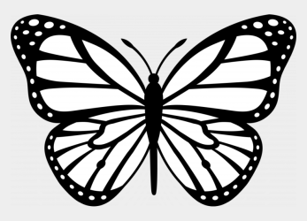 Coloring Pictures Of Flowers And Butterflies Images Butterfly Outline Cliparts & Cartoons Jing fm