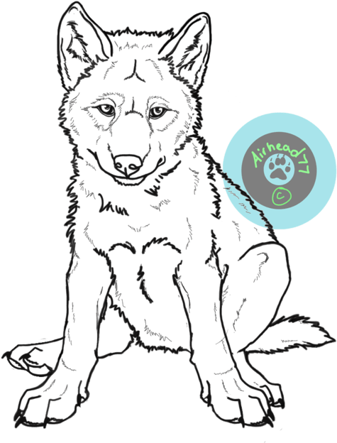 Wolf Pup Drawing : drawing, Us/clipart/drawn, Husky, Sitting, Drawing, Transparent, Cartoon, Jing.fm