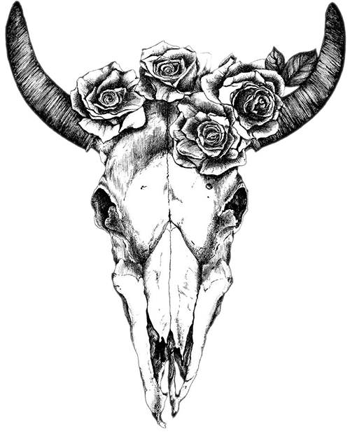 Bull Skull Clipart : skull, clipart, Texas, Longhorn, Drawing, Human, Skull, Symbolism, Tattoo, Flowers, Transparent, Cartoon, Jing.fm
