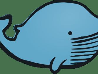 Whale Clipart Transparent Background Whales Transparent Cartoon Jing fm