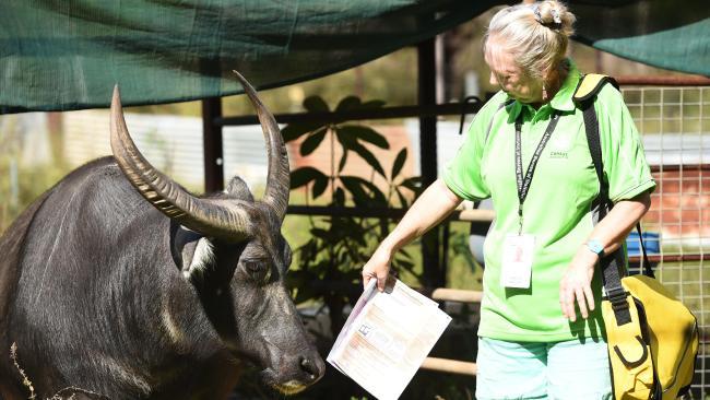 เจ้าหน้าที่แจกและเก็บแบบสำรวจสำมะโนประชากรจะออกทำงานอีกครั้ง ก่อนที่จะปรับ : ภาพจากสำนักข่าว news.com.au