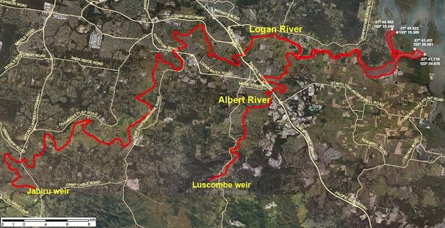 บริเวณเส้นสีแดงคือระบบแม่น้ำ Logan River ที่ทางการห้ามจับสัตว์น้ำ : ภาพจากกระทรวงเกษตรรัฐควีนสแลนด์