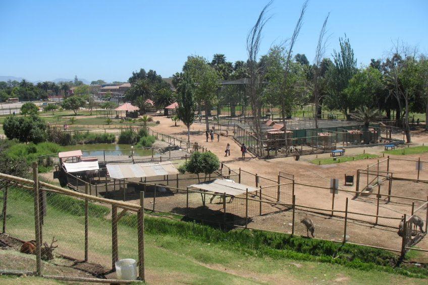 佩德羅德瓦爾迪維亞公園 Parque Pedro de Valdivia – 家鄉美