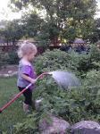 joie gardening june 2013