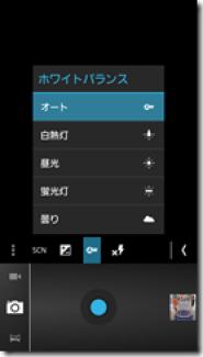 Camera_ICS (5)