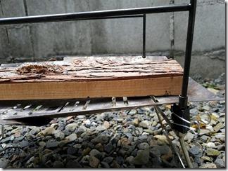 TokyoCamptakibidai-fuman (14)