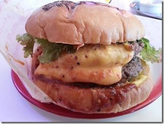 T's Star Diner  (29)