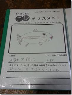 akuapiaakutagawa (7)