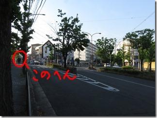 bukkyoudaigaku-murasakinokyannpasu (9-1)
