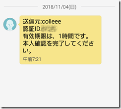 colleee (25)