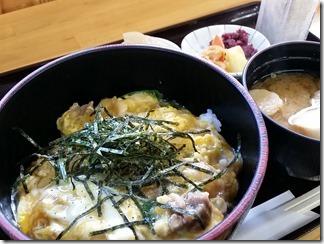 hanamurasaki (11)