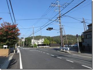 hanaseyamanoiewomezasu (13)