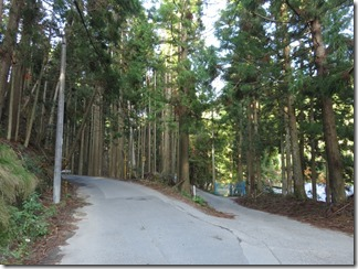 hanaseyamanoiewomezasu (43)