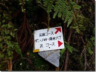 hirogawarasugawaratyou-dannotouge (14)