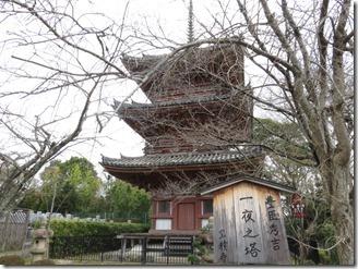 hosyakuji (11)