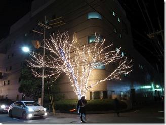 illumination (12)