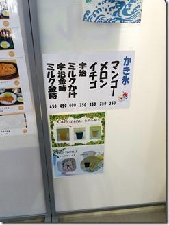 kamikosikijika-kagosimasinai-2018-08-11 (2)