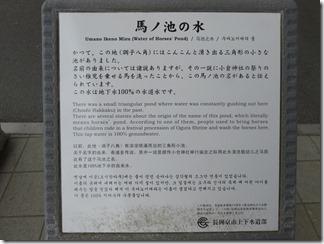 katuragawakasennsi-nisiyamatennouzan (52)