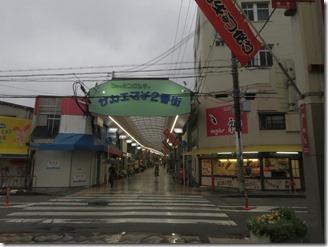 kobayasiichizoukinenkan (1)