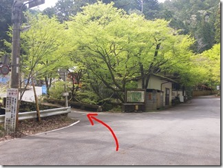kumogahara-oomori (35-2)