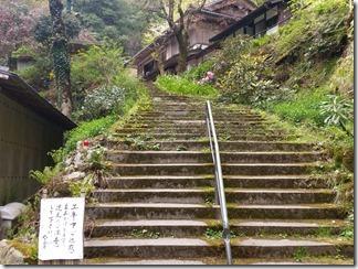 kumogahara-oomori (40)