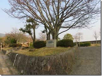 kyoto-iwakura (33)