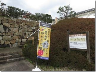 maidururyokou-tanabejyouato-maidurukouen (51)