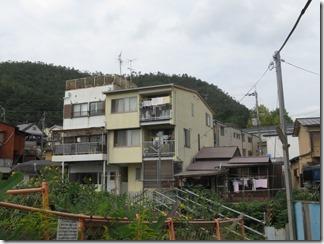 mamiyagawa (48)