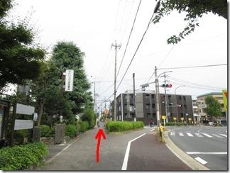 mamiyagawa (7-1)