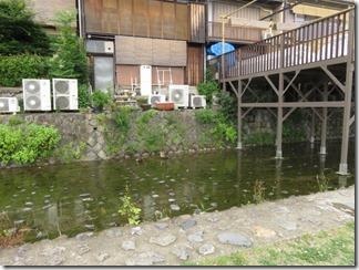 misosokigawa-kamogawa-hotaru-sijyoumade (77)