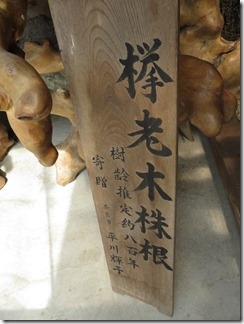narakaedenosato-hirara (35)