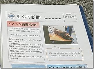 okisima-biwako (5-1)