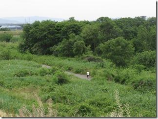 ooyamazaki-katuragawakasennsi (32)