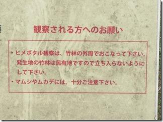 ooyamazaki-katuragawakasennsi (56)