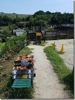 the-Farm (14)