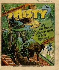 Misty cover witch