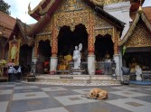 Doi Suthep, Chiang Mai.