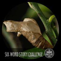 "Six-Word Story Challenge - ""Change"""