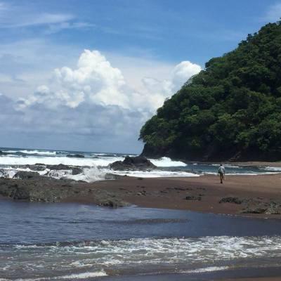 Beach Bums: Camera Roll