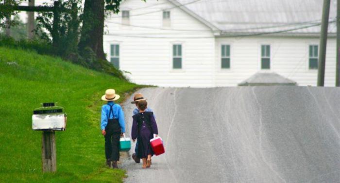 wpid-1119_amish_children_on_way_to_school