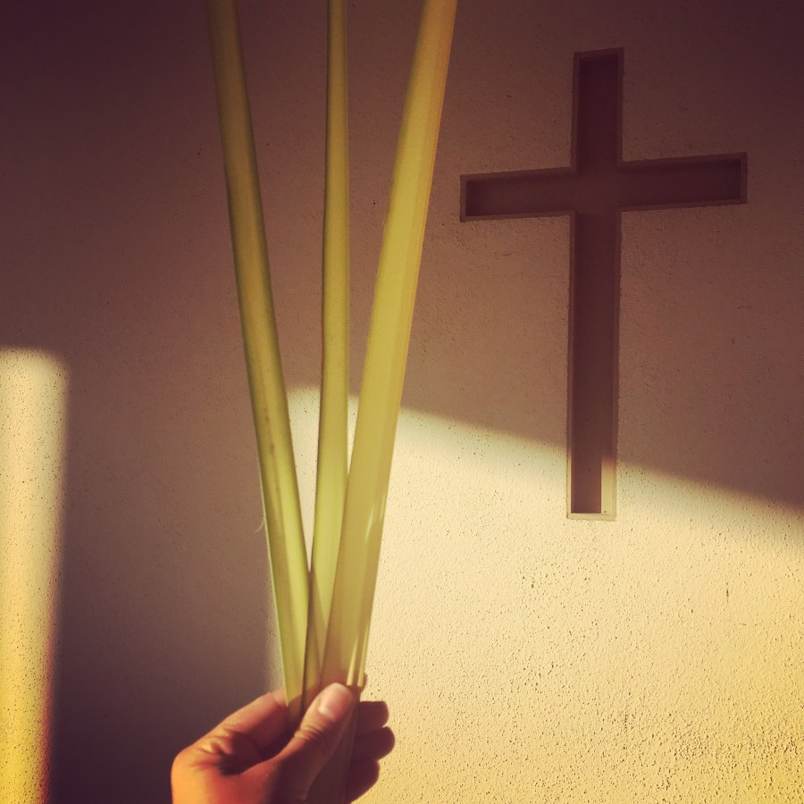 Student Series! Palm Sunday